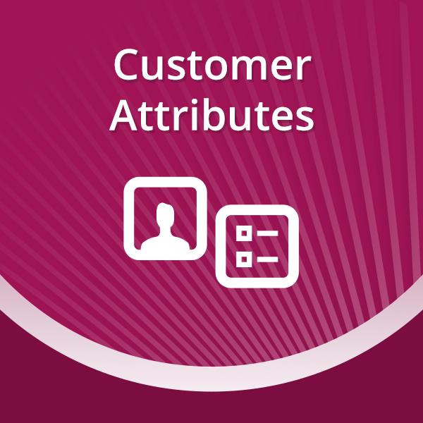 Customer Attributes