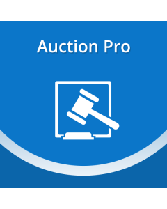 Magento Auction Pro
